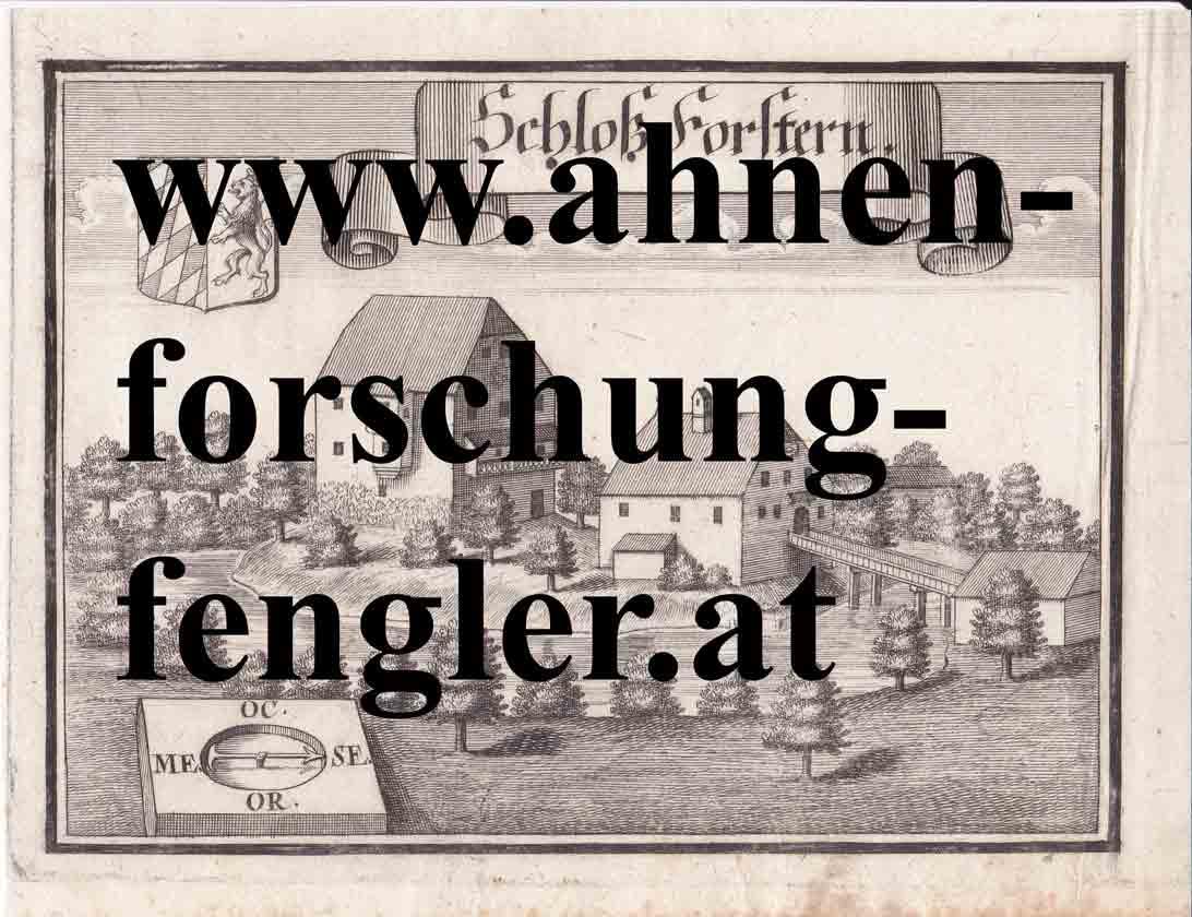 206007-Schloss-Forstern